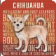 Chihuahua cork backed drinks mat / coaster (og)